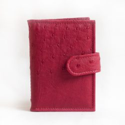Kaardihoidja punane