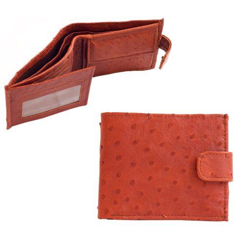 Rahakott pruun