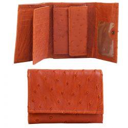 Pruun rahakott